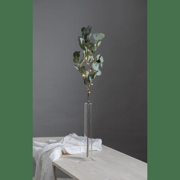80971236-decorative-twig-eucalyptus-sn-600×600-524bf54b72f79c29e6021fa4e8e599d5