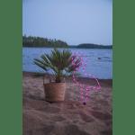 LED āra dekors Flamingo, 63cm, 38LED, IP44, 3xC