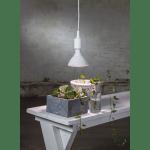 LED augu audzēšanas spuldze E27, PAR38, 16W, 1200lm, 40LED, sarkana-zila gaisma