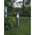 LED dārza gaismeklis ar saules bateriju Star Trading Capri 57cm, 20lm, IP44